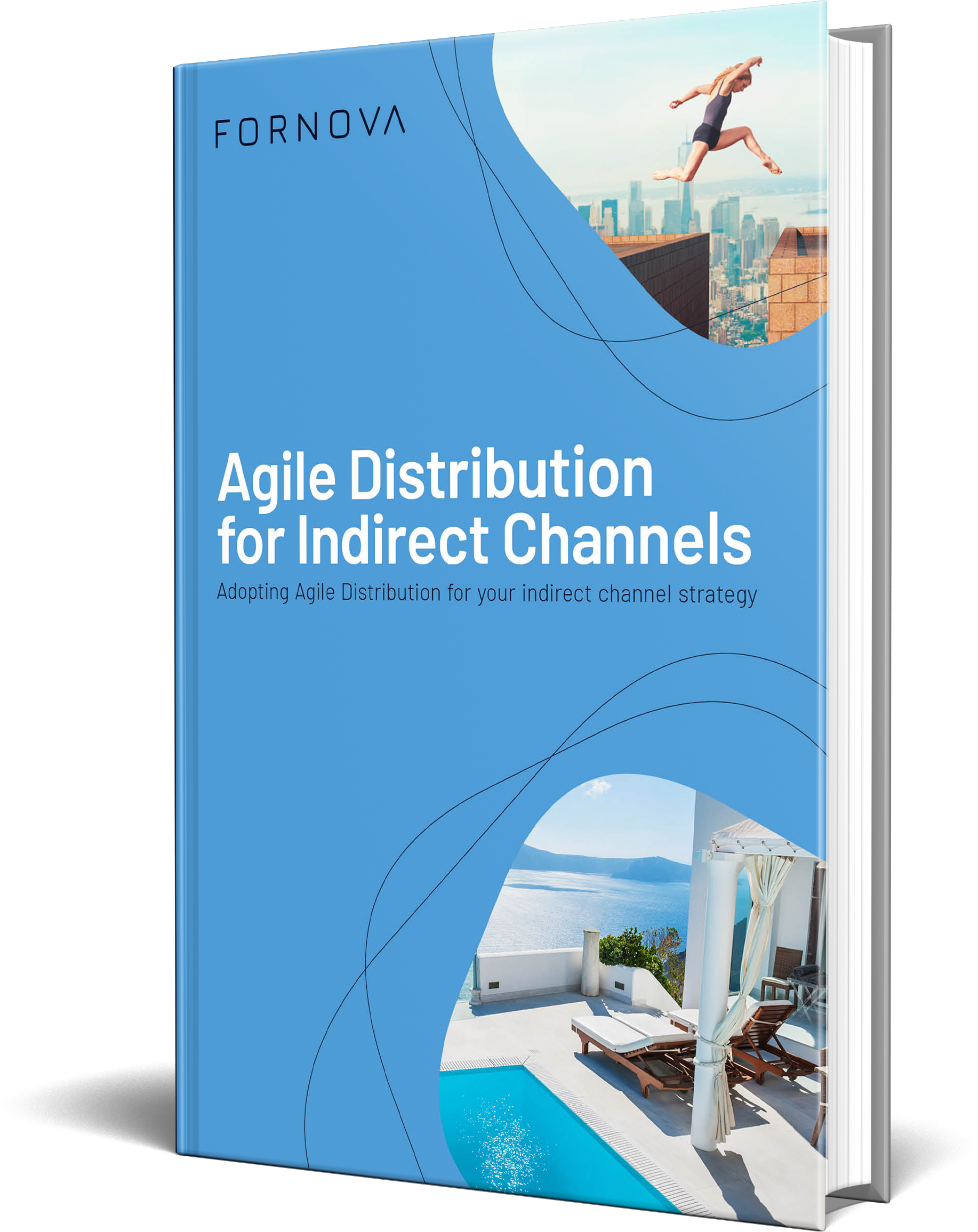Agile Distribution for Indirect Channels eBook